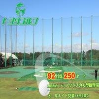 トヨタゴルフ